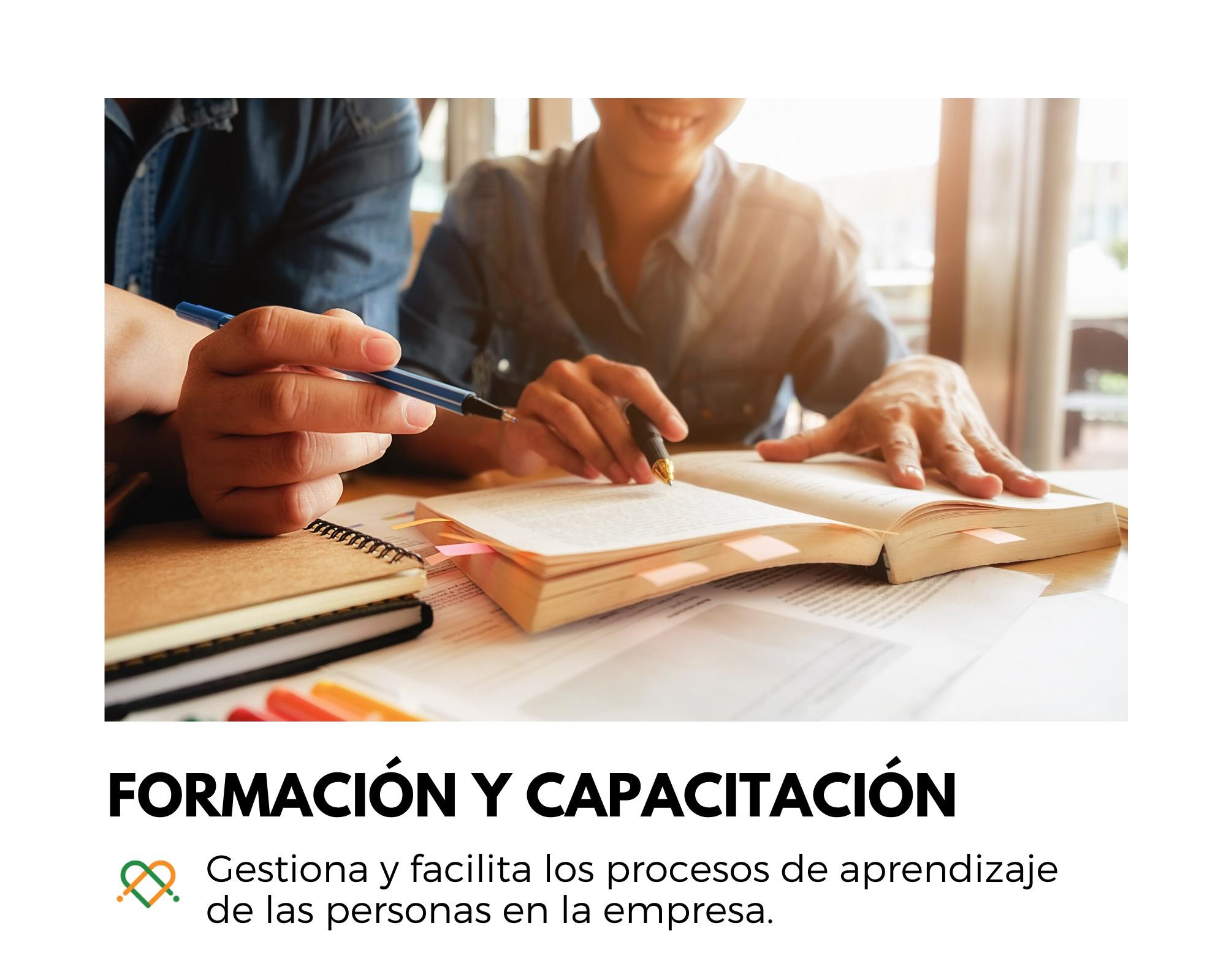 Gestiona y facilita los procesos de aprendizaje de las personas en la empresa.